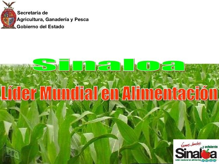 Secretaría de Agricultura, Ganadería y Pesca Gobierno del Estado Líder Mundial en Alimentación Sinaloa Secretaría de Agric...