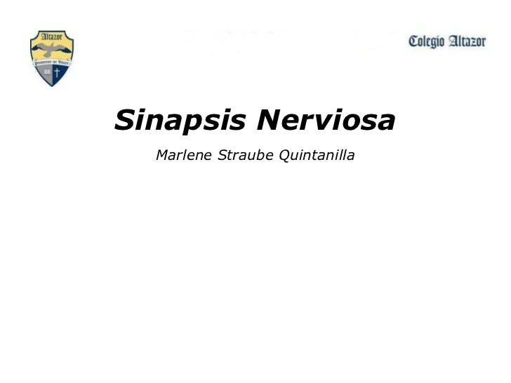 Sinapsis Nerviosa Marlene Straube Quintanilla