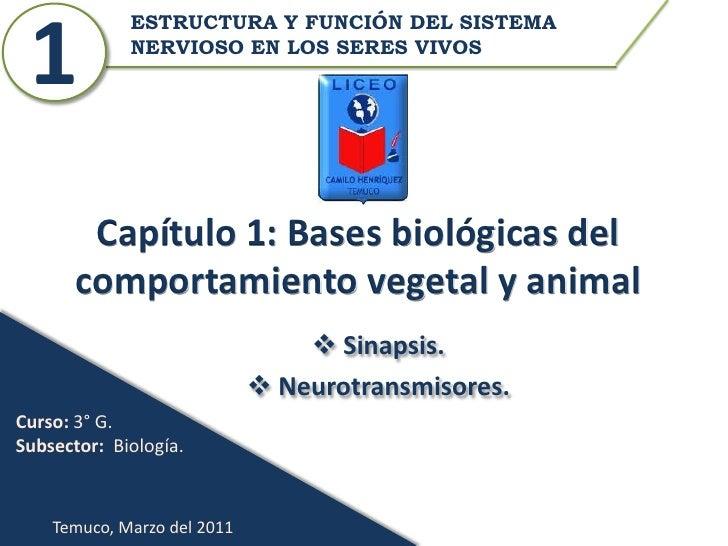ESTRUCTURA Y FUNCIÓN DEL SISTEMA 1           NERVIOSO EN LOS SERES VIVOS        Capítulo 1: Bases biológicas del       com...