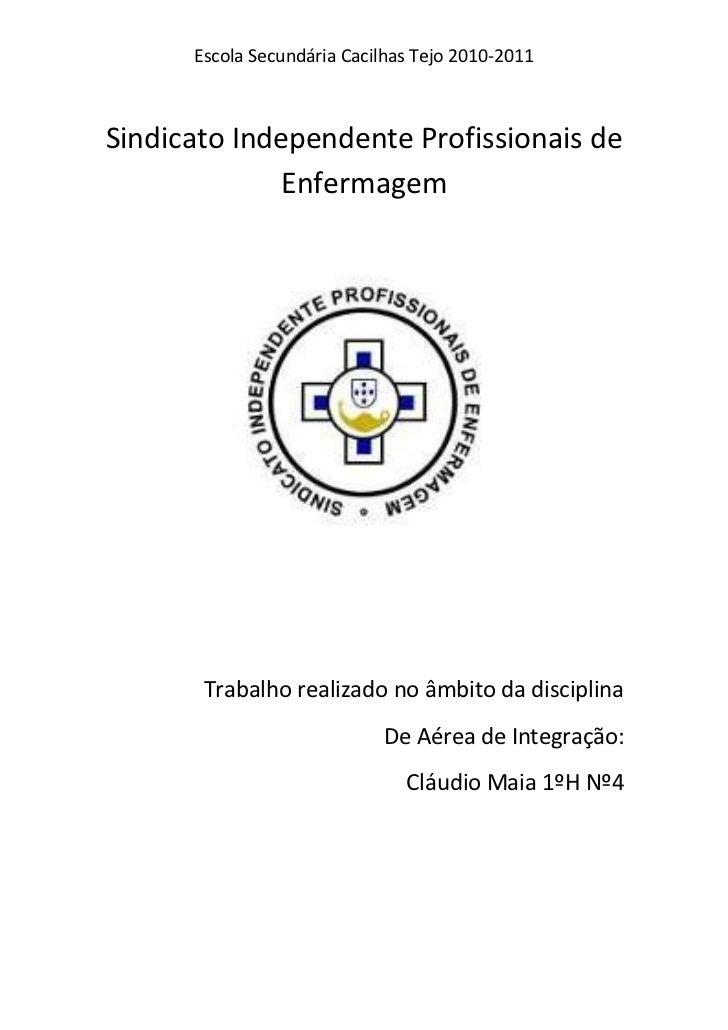Sindicato Independente Profissionais de Enfermagem <br />Trabalho realizado no âmbito da disciplina <br />De Aérea de Inte...