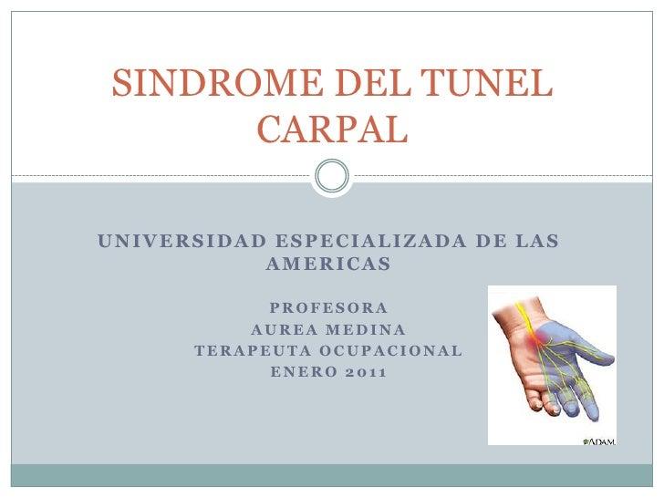 UNIVERSIDAD ESPECIALIZADA DE LAS AMERICAS<br />PROFESORA<br />AUREA MEDINA <br />TERAPEUTA OCUPACIONAL<br />ENERO 2011<br ...