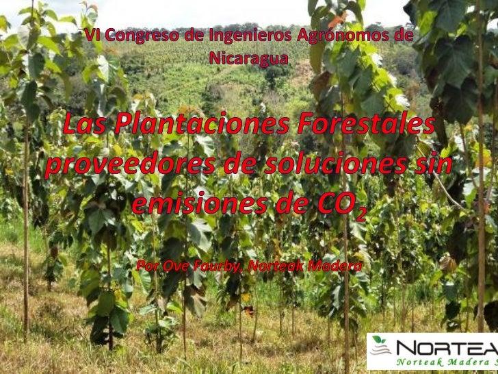 Norteak Madera es Operador Forestal de                          HEMCO Nicaragua y Norteak Nicaragua,                      ...