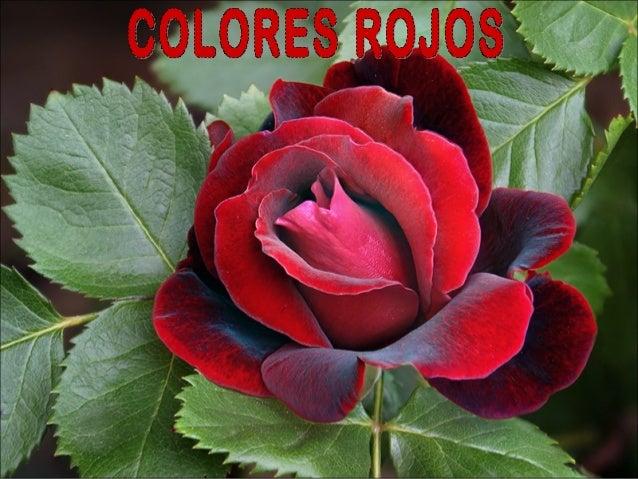 Άλλη φορά άλλο χρώμα. Σήμερα μόνο κόκκινο!!