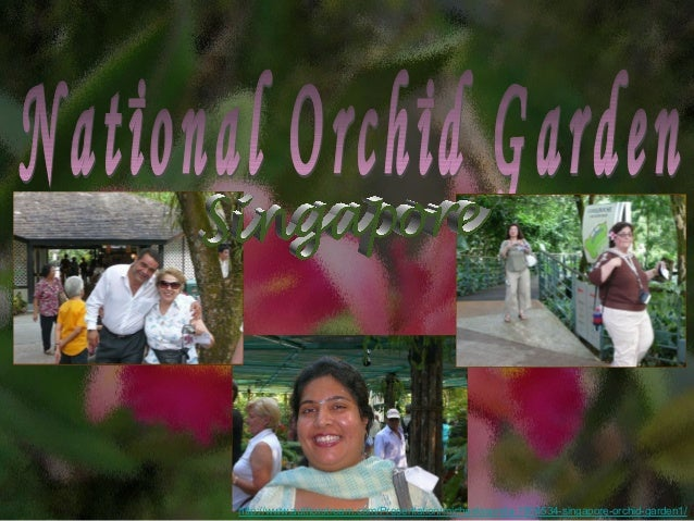 Singapore orchid garden1