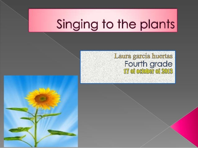 PROCES  1. FIRTS,I PLANTED 3 PLANTS THAT ARE CALL GIRASOL.  2. SECOND,I STARTED TO TAKE CARE IT.  3. THEN.ALL THE DAYS ...