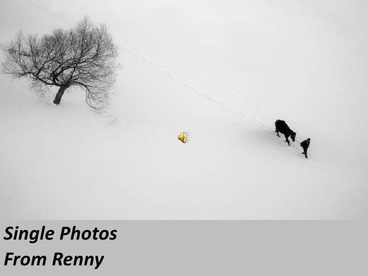Single Photos<br />From Renny<br />