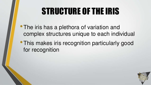 Master thesis iris recognition
