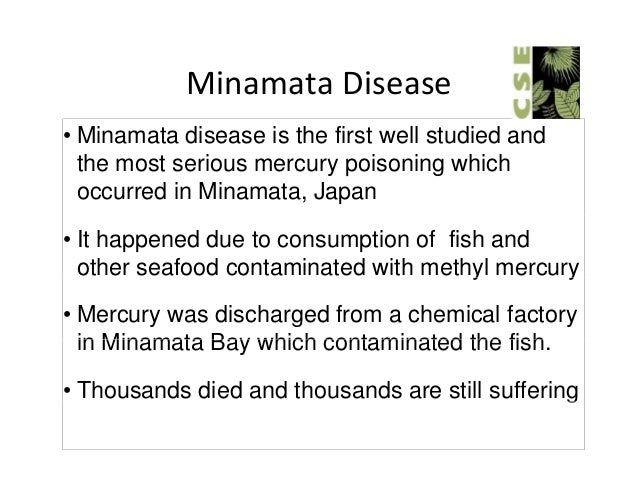 Sonbhadra districts under mercury poisoning for What fish has the most mercury
