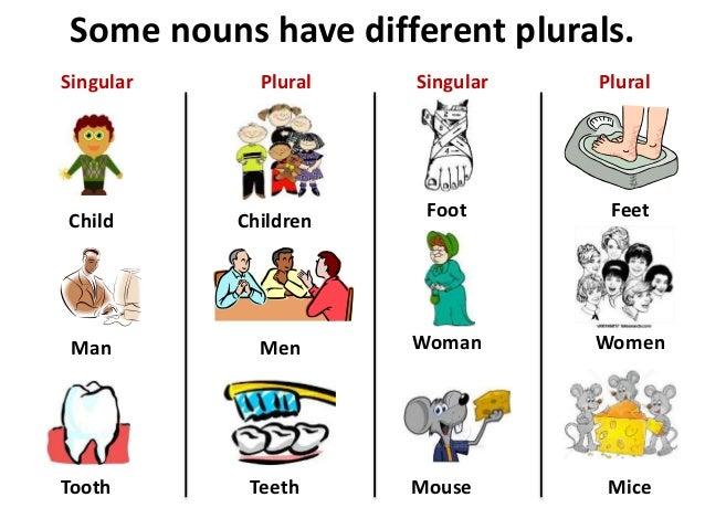 Singular And Plural in Hindi Singular Plural Child Man