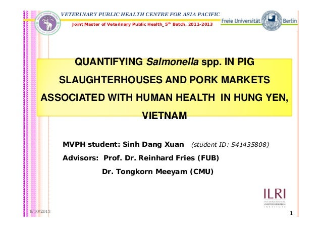Hung Yen Vietnam  city photos gallery : ... and pork markets associated with human health in Hung Yen, Vietnam