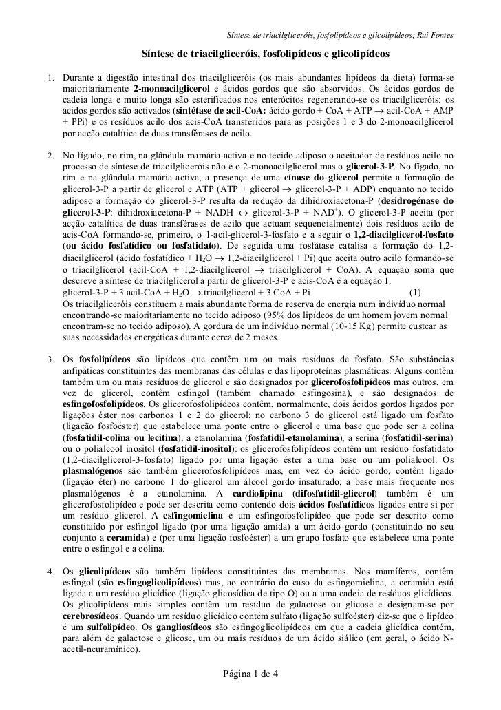 Síntese de triacilgliceróis, fosfolipídeos e glicolipídeos; Rui Fontes                        Síntese de triacilgliceróis,...