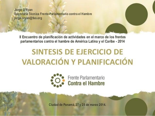 Síntesis del ejercicio de planificación de los frentes parlamentarios contra el hambre