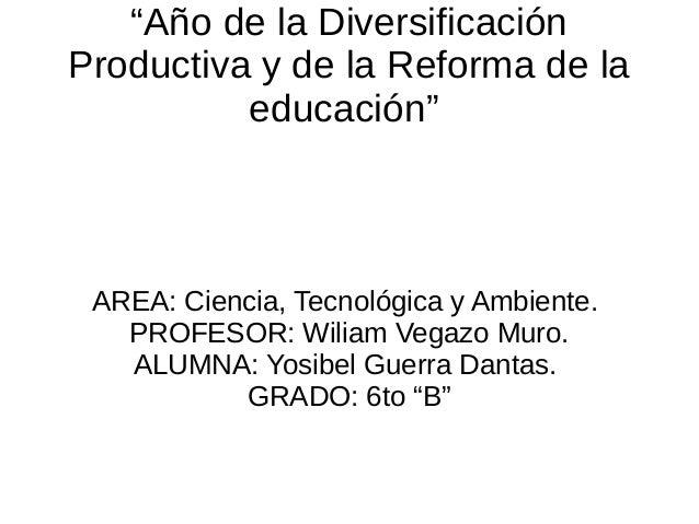 """""""Año de la Diversificación Productiva y de la Reforma de la educación"""" AREA: Ciencia, Tecnológica y Ambiente. PROFESOR: Wi..."""