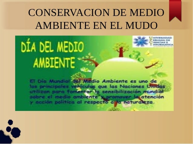 conservacion del medio ambiente yahoo dating