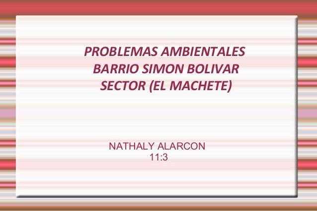 PROBLEMAS AMBIENTALES BARRIO SIMON BOLIVAR SECTOR (EL MACHETE) NATHALY ALARCON 11:3