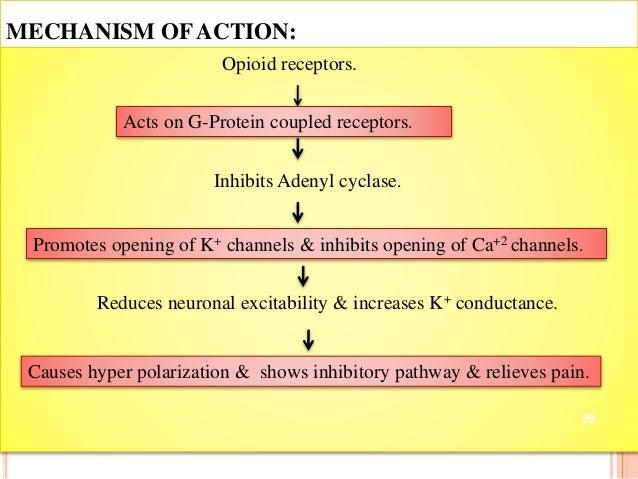 Levitra Drug Classification
