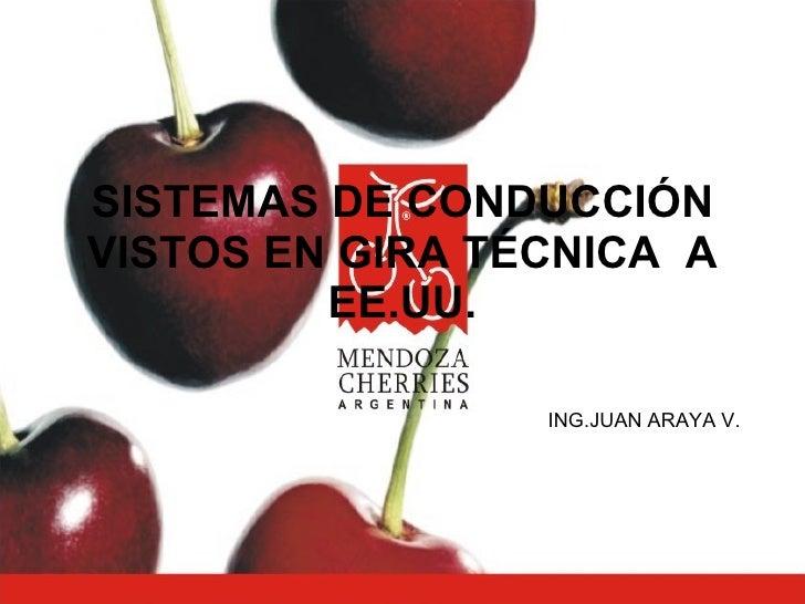 SISTEMAS DE CONDUCCIÓN VISTOS EN GIRA TÉCNICA  A EE.UU. ING.JUAN ARAYA V.