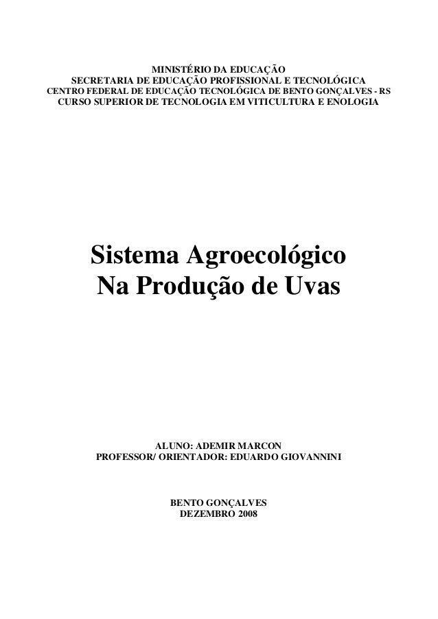 MINISTÉRIO DA EDUCAÇÃOSECRETARIA DE EDUCAÇÃO PROFISSIONAL E TECNOLÓGICACENTRO FEDERAL DE EDUCAÇÃO TECNOLÓGICA DE BENTO GON...