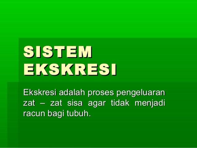 Sistem ekskresi-devy1