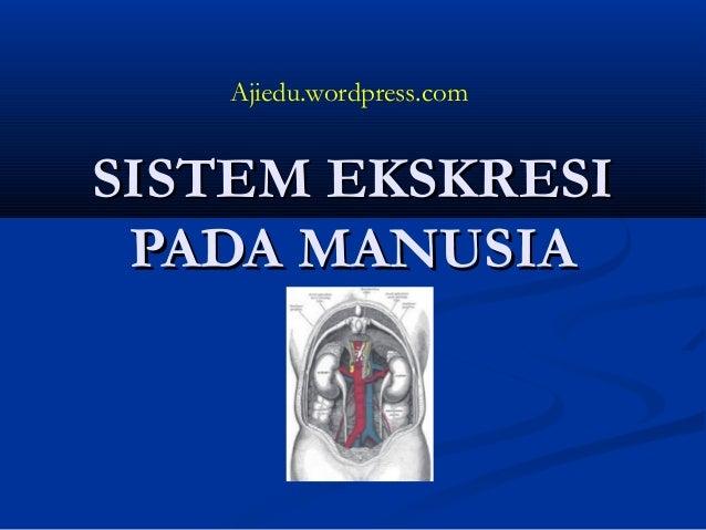 SISTEM EKSKRESISISTEM EKSKRESI PADA MANUSIAPADA MANUSIA Ajiedu.wordpress.com