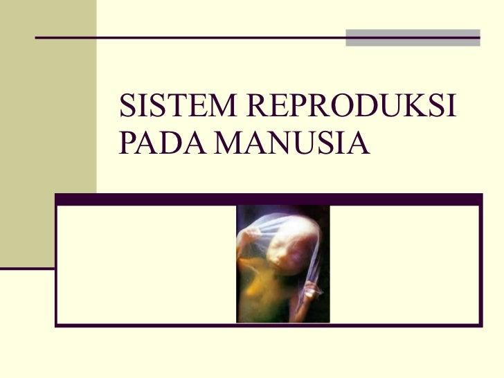 Sistem reproduksi-pada-manusia