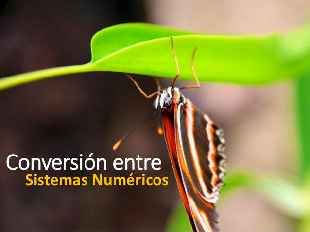 Conversión entre  Sistemas Numéricos