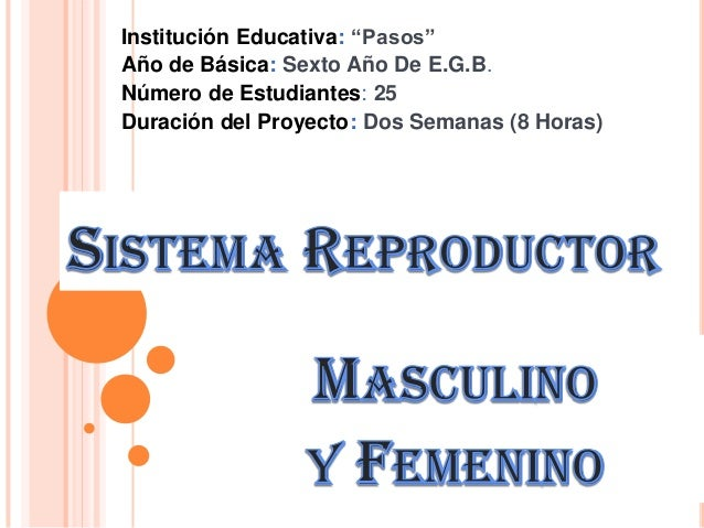 Sistema reproductor (1)