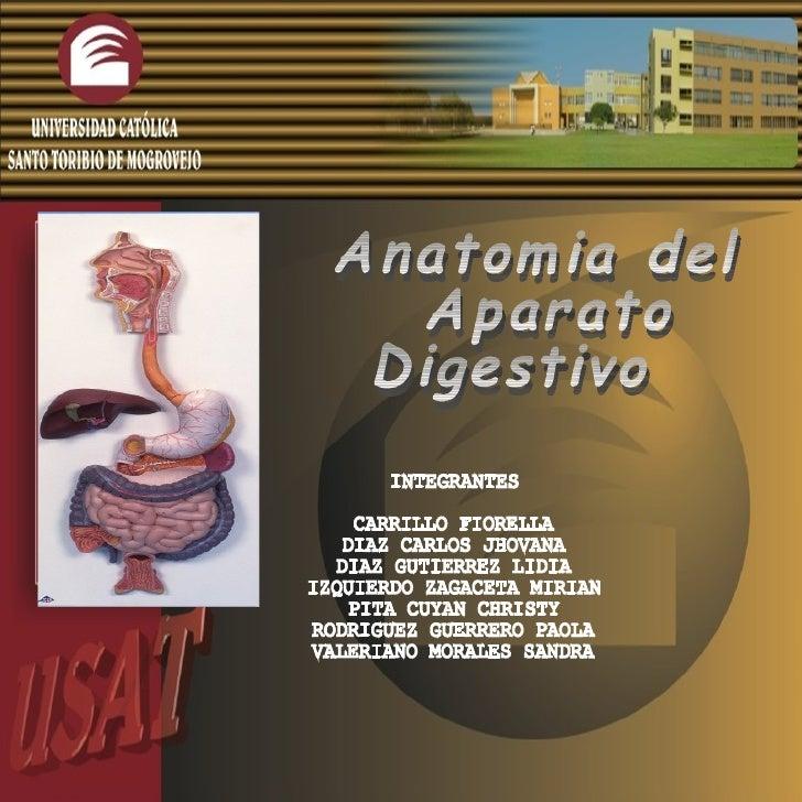 Anatomia del Aparato  Digestivo  INTEGRANTES CARRILLO FIORELLA DIAZ CARLOS JHOVANA DIAZ GUTIERREZ LIDIA IZQUIERDO ZAGACETA...