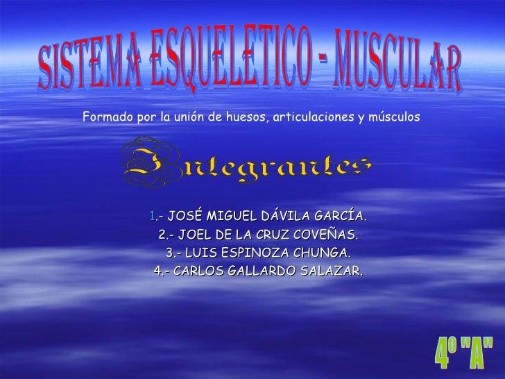 Sistema Esqueltico Y Muscular4021