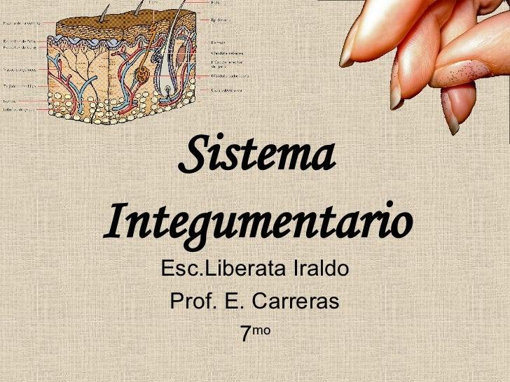 Sistema Integumentario Esc.Liberata Iraldo Prof. E. Carreras 7 mo