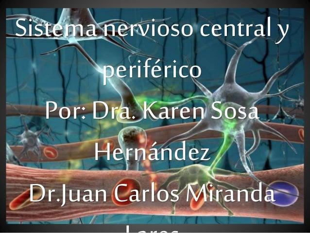 Sistema nervioso central y periférico Por: Dra. Karen Sosa Hernández Dr.Juan Carlos Miranda
