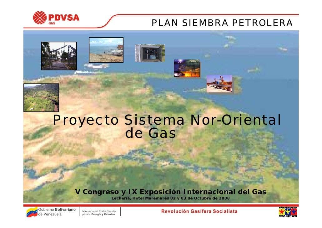 PLAN SIEMBRA PETROLERA            Proyecto Sistema Nor-Oriental                 de Gas                       V Congreso y ...