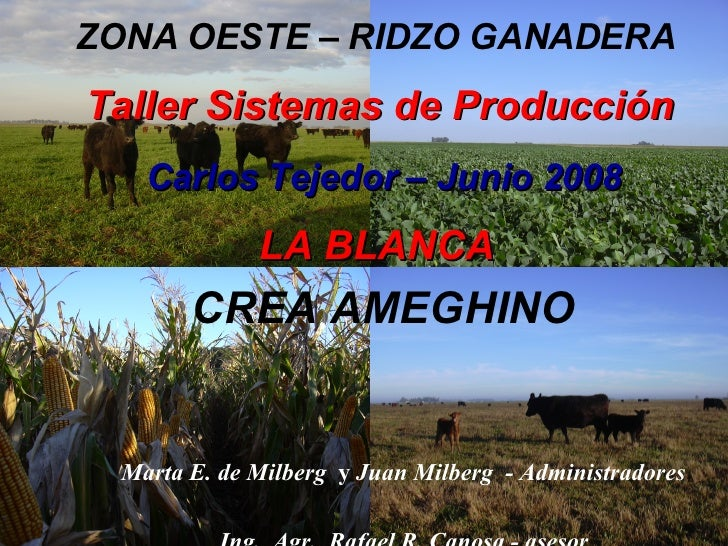 ZONA OESTE – RIDZO GANADERA Taller Sistemas de Producción  Carlos Tejedor – Junio 2008   LA BLANCA CREA AMEGHINO   Marta E...