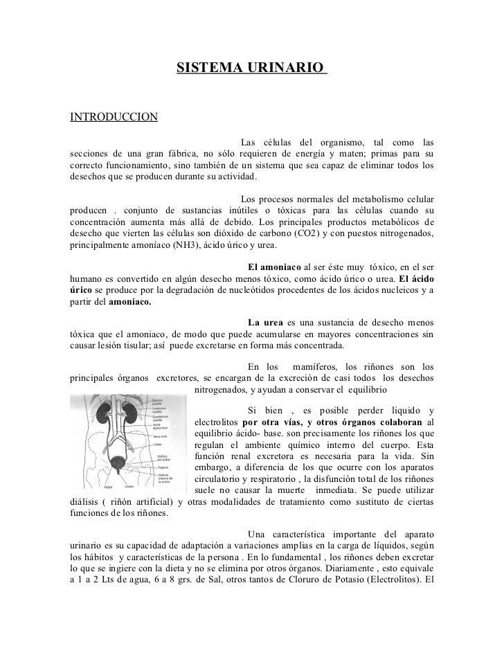 SISTEMA URINARIO   INTRODUCCION                                            Las células del organismo, tal como las seccion...