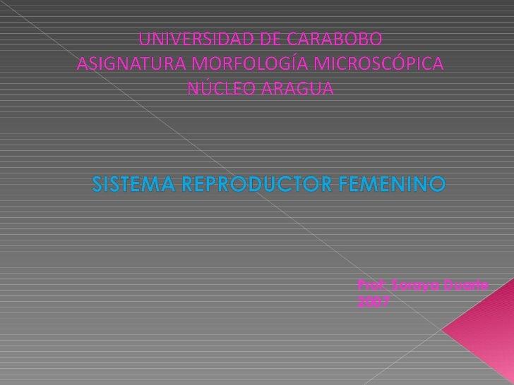 Prof: Soraya Duarte 2007