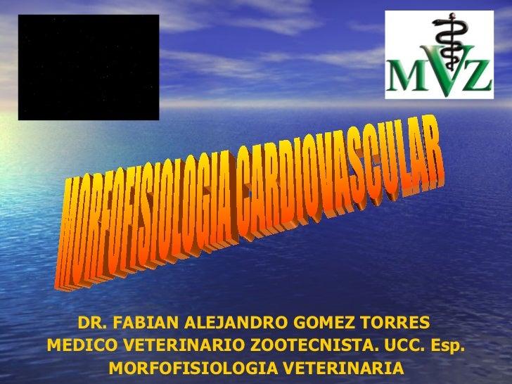 DR. FABIAN ALEJANDRO GOMEZ TORRES  MEDICO VETERINARIO ZOOTECNISTA. UCC. Esp. MORFOFISIOLOGIA VETERINARIA MORFOFISIOLOGIA C...