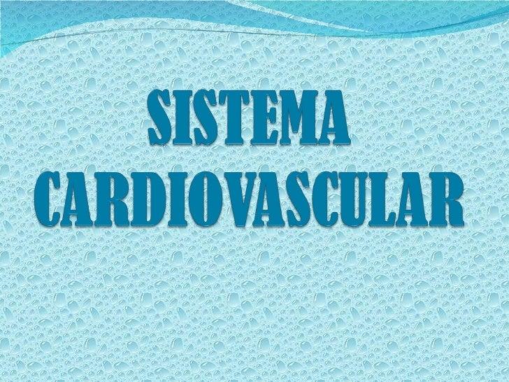 Órgãos do sistemacardiovascular: Coração Vasos Sanguíneos Sangue