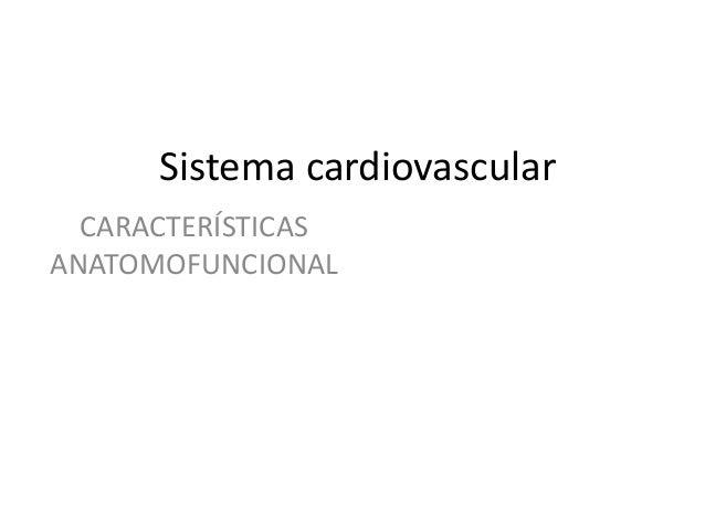Sistema cardiovascular CARACTERÍSTICAS ANATOMOFUNCIONAL