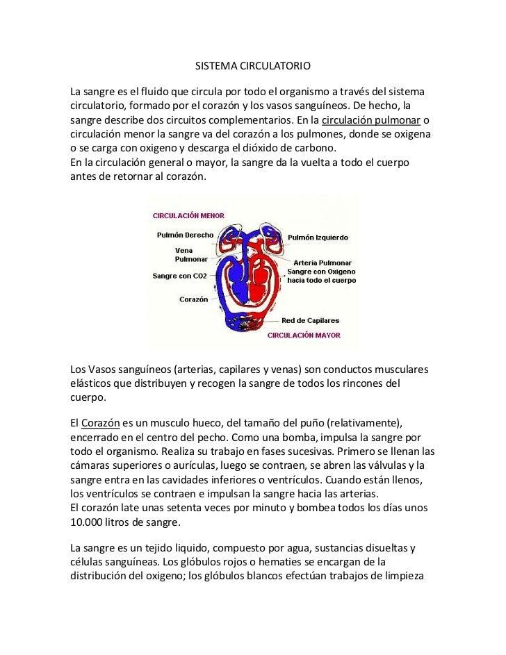 SISTEMA CIRCULATORIO<br />La sangre es el fluido que circula por todo el organismo a través del sistema circulatorio, form...