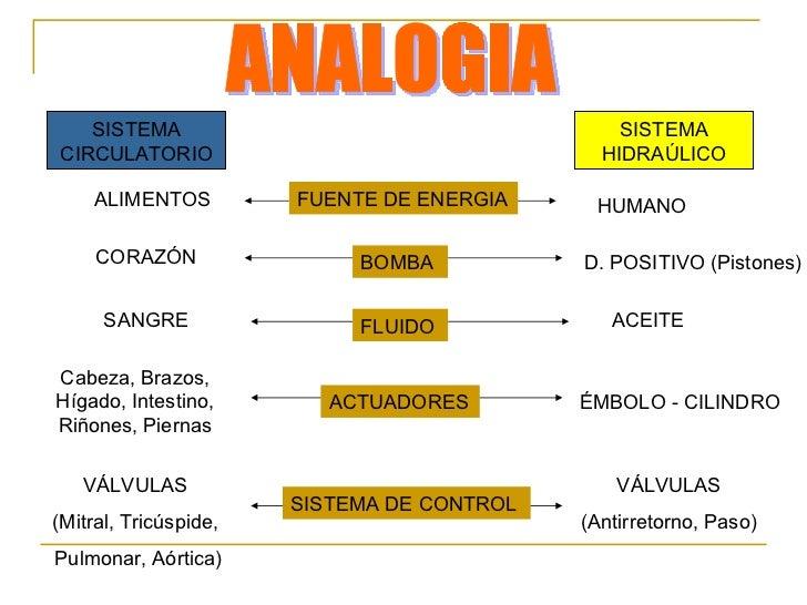 Sistema circulatorio Vs Sistema Hidráulico