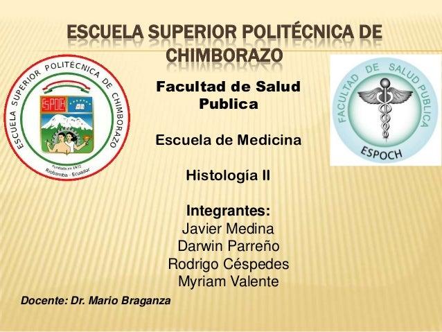 ESCUELA SUPERIOR POLITÉCNICA DECHIMBORAZOFacultad de SaludPublicaEscuela de MedicinaHistología IIIntegrantes:Javier Medina...