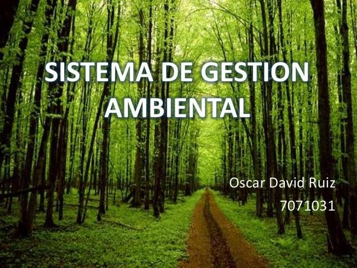 SISTEMA DE GESTION AMBIENTAL<br />Oscar David Ruiz<br />7071031   <br />