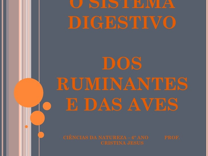 Sistema digestivo dos animais