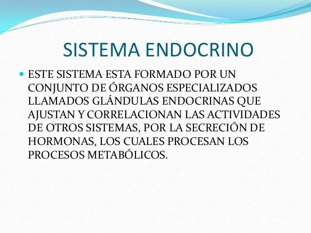SISTEMA ENDOCRINO ESTE SISTEMA ESTA FORMADO POR UN CONJUNTO DE ÓRGANOS ESPECIALIZADOS LLAMADOS GLÁNDULAS ENDOCRINAS QUE A...