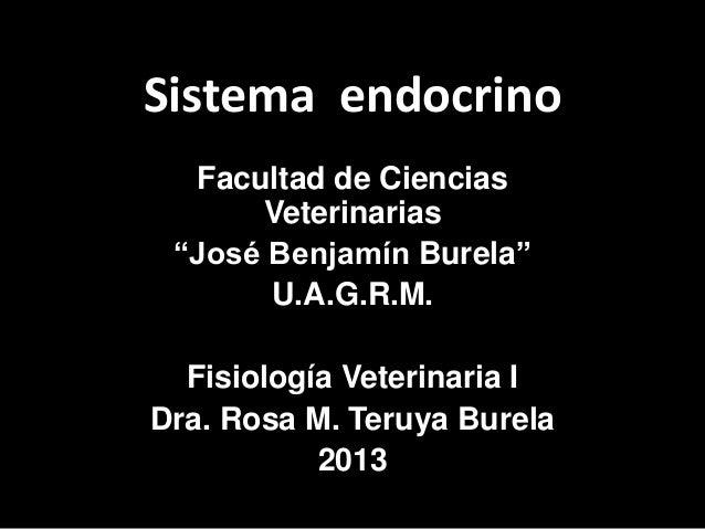 """Sistema endocrino  Facultad de Ciencias      Veterinarias """"José Benjamín Burela""""       U.A.G.R.M.  Fisiología Veterinaria ..."""