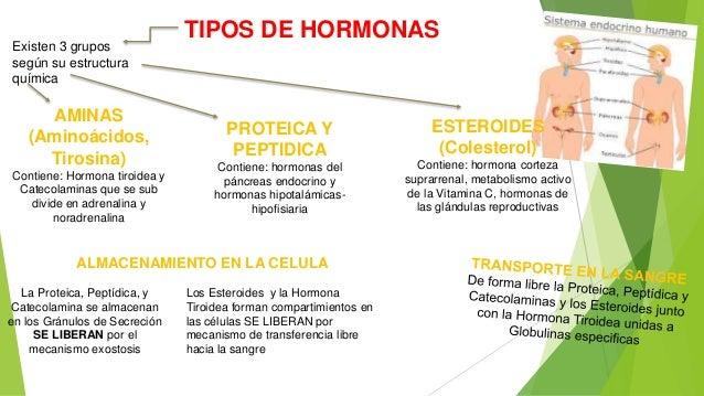 cuales son los esteroides anabolicos