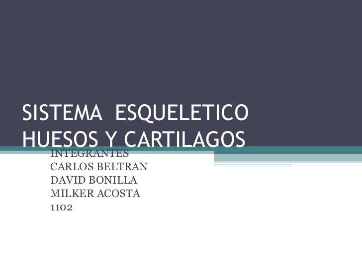 SISTEMA  ESQUELETICO HUESOS Y CARTILAGOS INTEGRANTES  CARLOS BELTRAN  DAVID BONILLA MILKER ACOSTA 1102