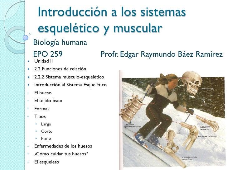 Introducción a los sistemas     esquelético y muscular    Biología humana    EPO 259                         Profr. Edgar ...