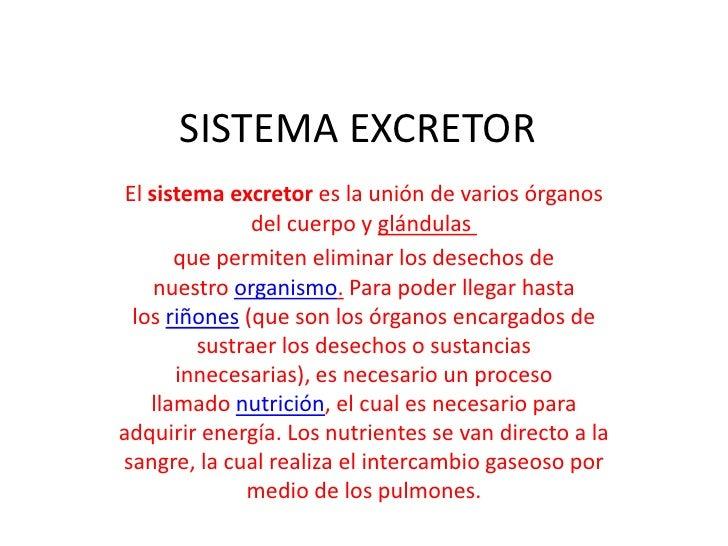 SISTEMA EXCRETOR El sistema excretor es la unión de varios órganos               del cuerpo y glándulas       que permiten...