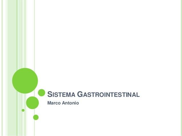 SISTEMA GASTROINTESTINAL Marco Antonio